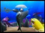 Viky, o pequeno golfinho